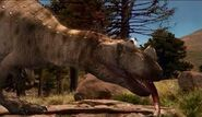 WDRACeratosaurus