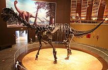 220px-MUJA-Sauropod