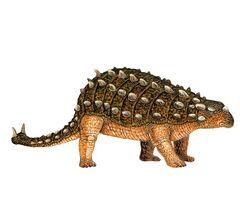 Scolosaurus.jpg