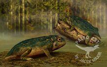 Triadobatrachus by a2812-d8szpw3