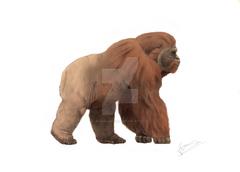 Gigantopithecus blacki by jesusgamarra-danugsb.png