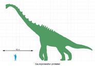Sauroposeidon-scale