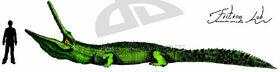 Stomatosuchus inermis by Kawekaweau