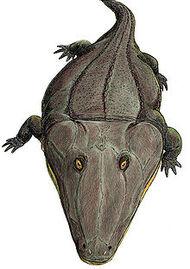 220px-Mastodonsaurus3.jpg