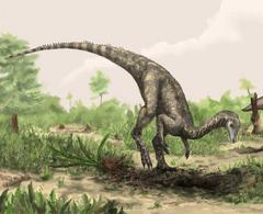 Nyasasaurus.png