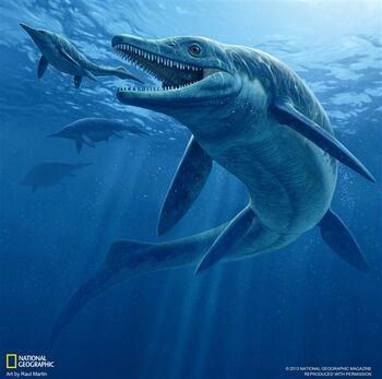 130104-coslog-ichthy-545p photoblog600