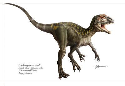 Condorraptor