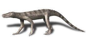 Dibothrosuchus BW