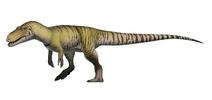 Restoration of Torvosaurus tanneri