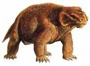 Pareiasaurus Baini