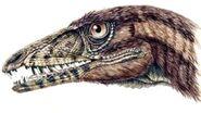 Tp-dinosaur-tawa-head 59d3