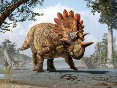 Regaliceratops.jpg