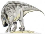 JPI Maiasaura