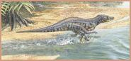 1238 17 12-protosuchus