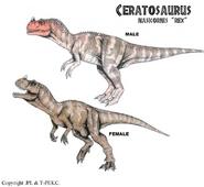 Ceratosaurus.2