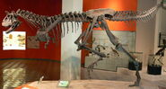 Dinossauromcnpucminas (1)