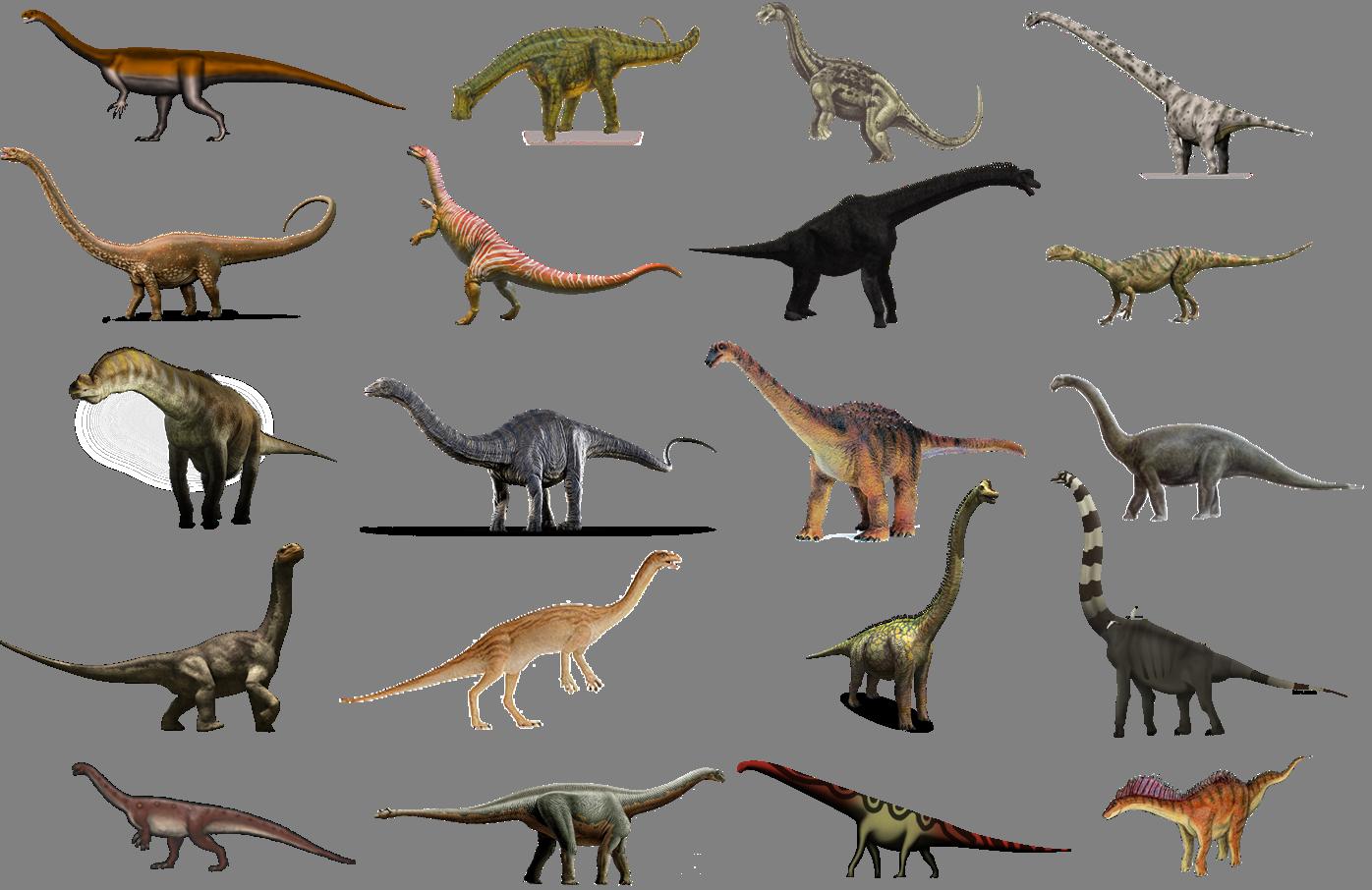 Výsledek obrázku pro sauropodomorpha