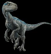 Fallen kingdom blue the velociraptor v4 by sonichedgehog2-dcalxw4