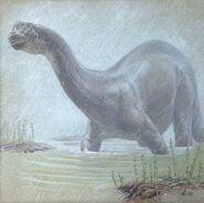 William D. Berry Apatosaurus.