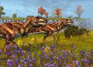 Giganotosaurus pair