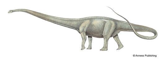 Mm-mamenchisaurus-illustration-big