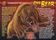 Cave Bear front