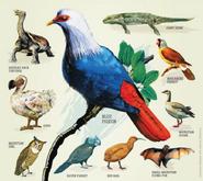 Poster of Mauritius animals