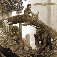 Australopithecus-africanus-artwork-science-photo-library