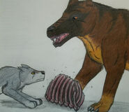 Andrewsarchus vs wolf by thylacine333 d2w312e