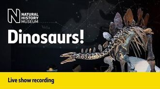 Dinosaurs Live Talk with NHM Scientist