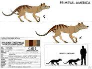 Pa thylacine by hublerdon dcourpv