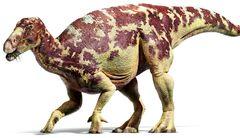 IguanodonInfobox.jpg