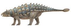 Shamosaurus 0001.jpg