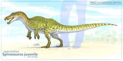 Fred-wierum-spinosaurus-baby2-copy