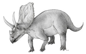 800px-Sketch chasmosaurus
