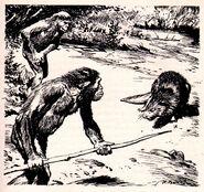 Beaver battle by zdenek burian 1962.JPG