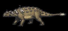 Ankylosaurus magniventris reconstruction.png