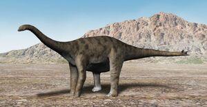 Spinophorosaurus NT