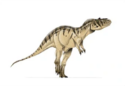 JPI Albertosaurus