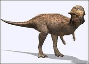 Prenocephale dinosaur planet