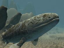 Gogofish-holding-image