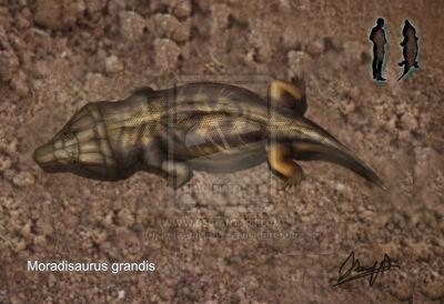 Moradisaurus grandis by karkemish00-d4oxfsc