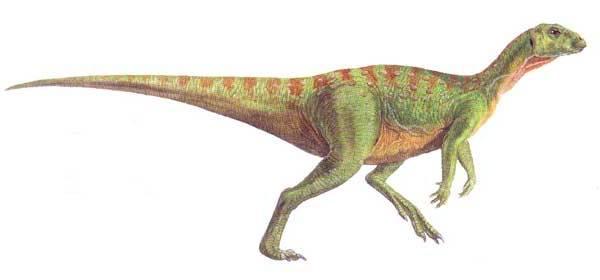 File:Hypsilophodon foxii.jpg