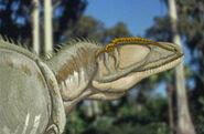 Carcharodontosaurus 300 196