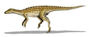 Scutellosaurus-795793