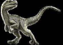 Delta Raptor