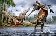 Spino and Carcharodontosaurus