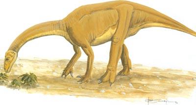 YunnanosaurusBrian-Franczak