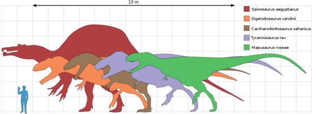 File:Largest Therapods Scale.png