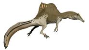 Life restoration of Spinosaurus swimming pose
